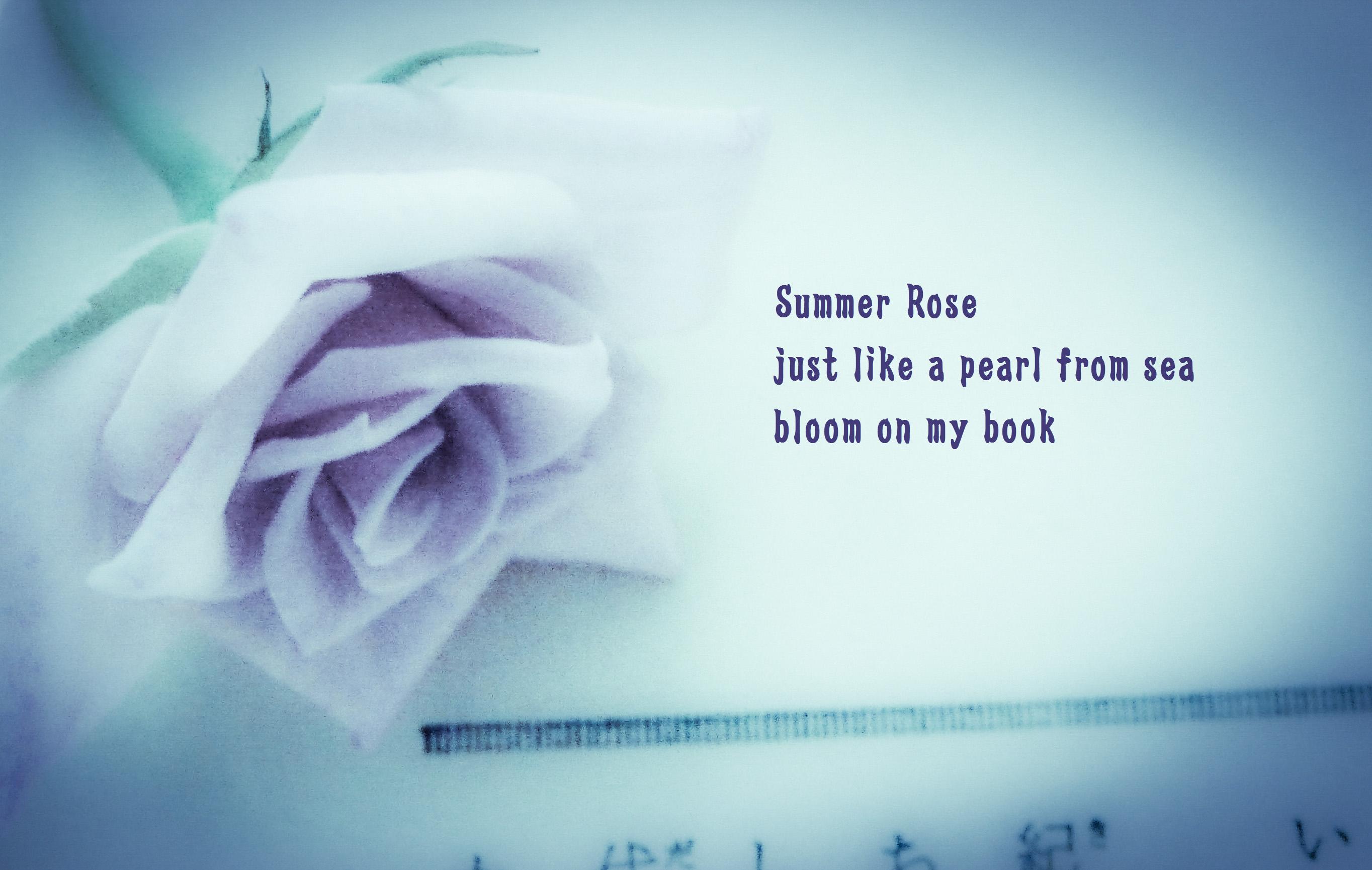 Summer Rose Blue
